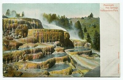Postcard MAMMOTH HOT SPRINGS YELLOWSTONE NATIONAL PARK WYOMING  c1900s