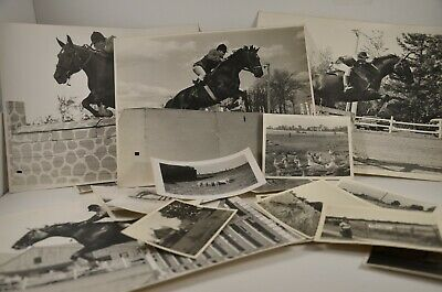 Antique photoagraphy vintage photos huge lot . ( Lots of Horses )