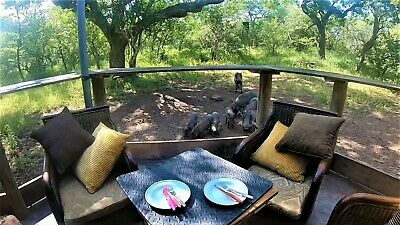 7 nights, Christmas accommodation, 5 adults, overlooking Kruger National Park