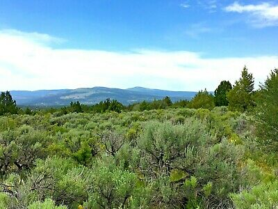 20 Acres Northern California Mountain Property Screaming Deal Views Galore