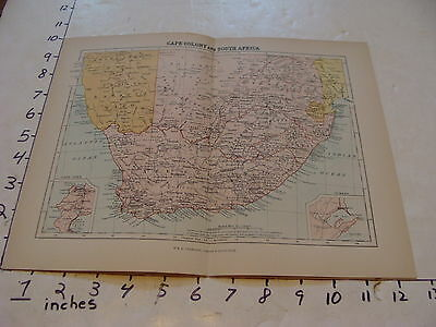 vintage map CAPE COLONY & SOUTH AFRICA