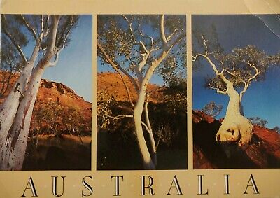 Australia, Random Gumtrees growing in Inhospitable Places – Postcard – 1988