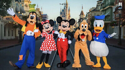 One DisneyWorld 6 Day Park Hopper - Ages10+; Exp 14 Days From 1st Use