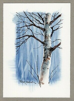 """Winter Birch"" 5x7 Fine Art Original Watercolor Peter Sheeler tree branches"