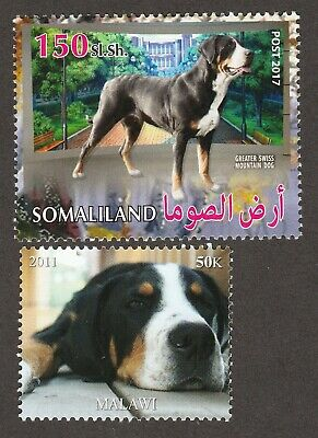 GREATER SWISS MOUNTAIN DOG **Int'l Postage Stamp Art Collection*Great Gift Idea*