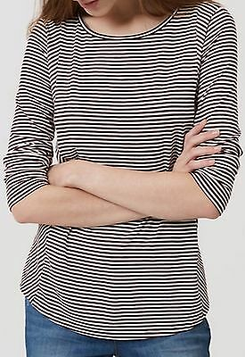 Ann Taylor LOFT New Womens size M Striped Rayon Knit Tee Top Violet ~ NWT $39.50