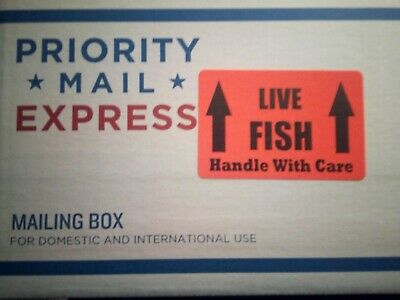Service Add-On For Priority Mail Express Shipping Live Betta  - Additional $33