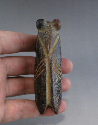 Chinese Hongshan Culture Old Jade Stone Hand Carved Cicada figurine Pendant
