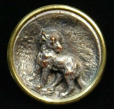 Antique Vtg BUTTON Small Silver DOG on Copper in Brass A.M & Cie 19 M PARIS Nice