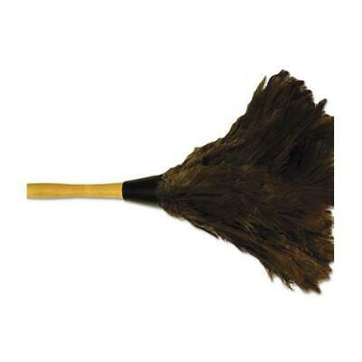 BWK Professional Ostrich Feather Duster with Wood Handle Brown - 14 in.