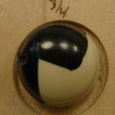 """WOW 5/8"""" Black and Cream  Celluloid Antique Button 37:38"""