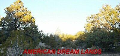 5.47 Acres Heber Arizona Chevelon Acres Heavily Trees Elk Country Cash Sale