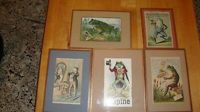 Vintage Original Trading Cards  Frog  Set Of 5