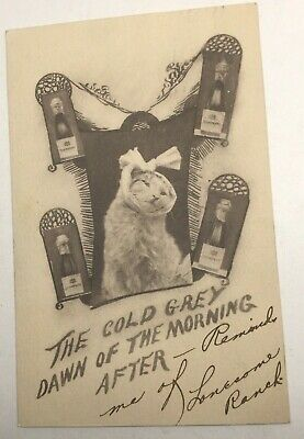 "Vintage Cat And Drinking Postard, ""Grey Dawn Of The Morning After"" Posted 1909"