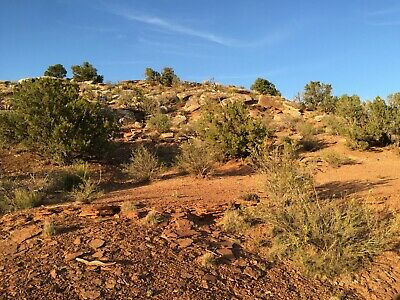 Two Lots In The Ranch Of The Golden Horse 2.20 Acres Total Cash Sale