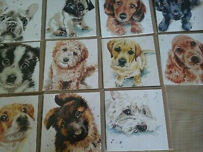 40 Puppy Dog Eyes Cards, Wholesale Joblot Greeting Cards