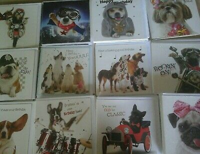 40 Fun Dogs Cards, Wholesale Joblot Greeting Cards
