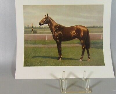man o' war race horse print by C.W. Anderson 1970