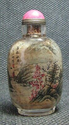 Chinese Delicate Inside-drawing Scenery Glass Snuff Bottle---=