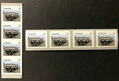 CANADA 2012 #s 2505-2506 - BABY WILDLIFE DEFINITIVE COILS- 2 STRIPS OF 4 MNH