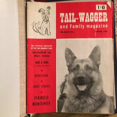 Vintage Dog Magazines 1968 (11 in binder) - Tail Wagger