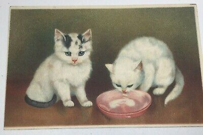 Vintage Cat Postcard, 2 Kittens & Milk, Embossed, Germany, By Mab Posted 1910