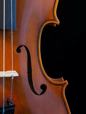 Old violin by Samuele Ciappelli