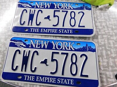 NY State CWC-5782 / pair of plates