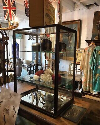 Lrg Edwardian Mahogany Glass Shop Display Cabinet Tailors Taxidermy Antique