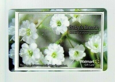 Walmart Gift Card - with Seed Packet of Baby's Breath - Older - No Value