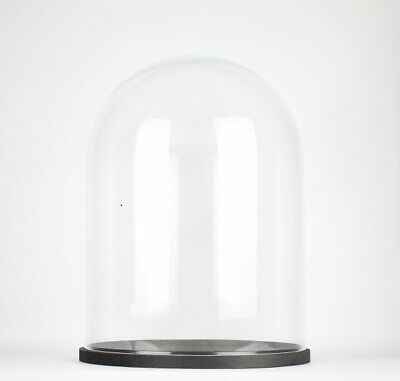 Handmade Clear Circular Large Glass Display Cloche Dome with Black Wooden Bas...
