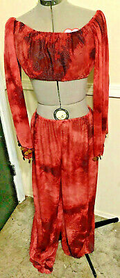 Maroon Gold Cropped Peasant Top Side-slit Harem Pants Belly Dance Costume S/M