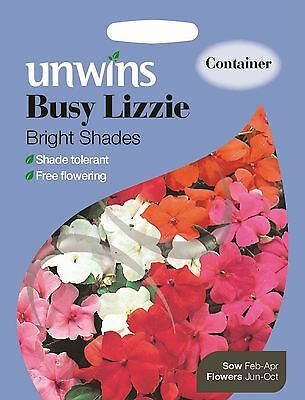 Unwins Pictorial Packet Lupin Pink Fairy 40 Seeds