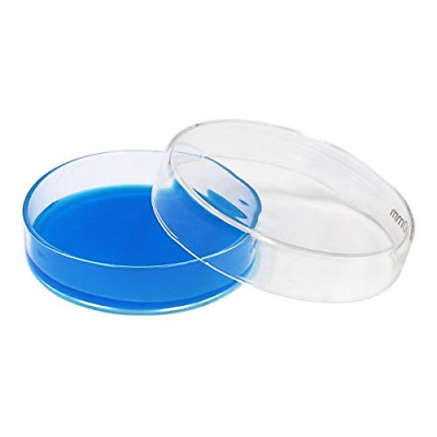 Lab Glass Petri Dish with Lids Petri Dish Kit Tissue Culture Plate for Science