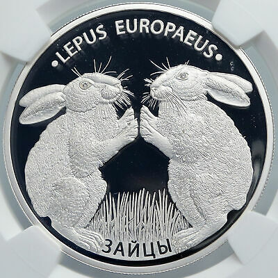 2014 BELARUS Hares Animals RABBITS Pets Proof Silver 20 Rouble Coin NGC i89091