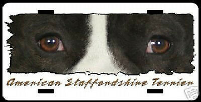 "Staffordshire  black  and White ""The Eyes Have It ""  Plate"
