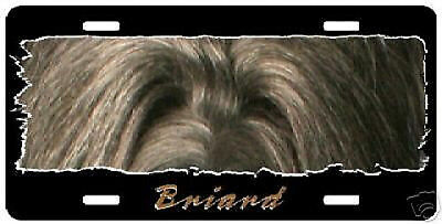 """Briard #2  """" The Eyes Have It """" License Plate"""