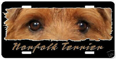 "Norfolk Terrier  "" The Eyes Have It ""  License  Plate"