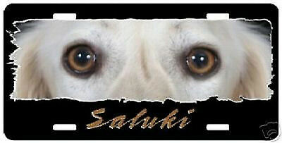 "Saluki  "" The Eyes Have It ""  License Plate"