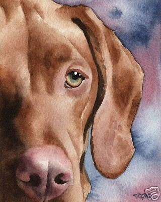 HUNGARIAN VIZSLA Painting Dog ART 13 X 17 Signed DJR