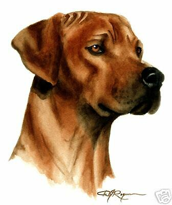 RHODESIAN RIDGEBACK Watercolor ART 13 X 17 LARGE DJR