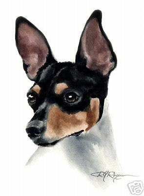RAT TERRIER Watercolor ART 13 X 17 LARGE Signed DJR