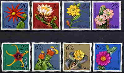 Poland 1981 Flowering Cactus - Mint Complete Set Of Eight Stamps!
