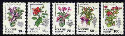 Russia 1993 Flower Stamps - Beautiful Mint Complete Set