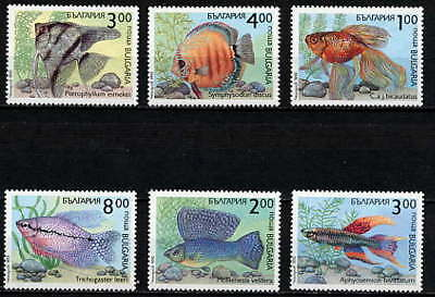 Bulgaria 1993 Aquarium Fish Set Of 6  Stamps Mint Complete!