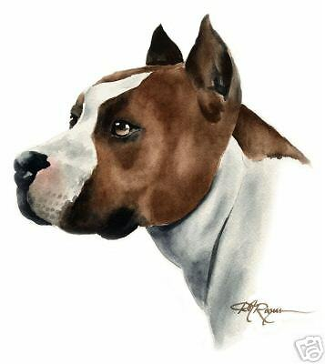Bulldog Art Pring Sepia Watercolor 11 x 14 by Artist DJR