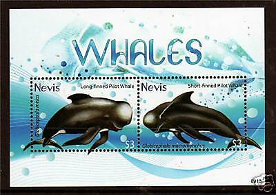 Nevis 2009 Whales MS NEW ISSUE MNH