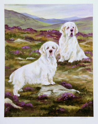CLUMBER SPANIEL GUN DOG FINE ART LIMITED EDITION PRINT by the late Julie Stooks