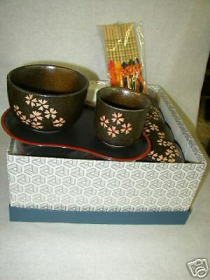 Japanese Stoneware Bowl and Tea Cup Set with Hashi