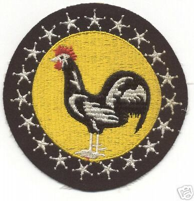 WW II 19th FIGHTER SQUADRON patch